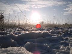 Pics/Art/Red Ball/PICT0732.JPG