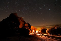 Camp at Joshua Tree II photo by Joshua Bury