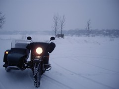 Ural near Lake Johanna