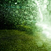 Cuba Gallery: Green / rain / water droplets / free download background wallpaper texture
