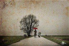 A Walk In The Rain photo by Fotogravirus