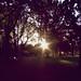Sunsetting over Carlton Gardens