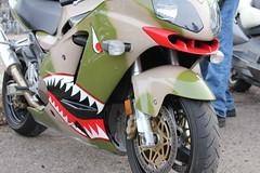 Custom Military Sport Bike