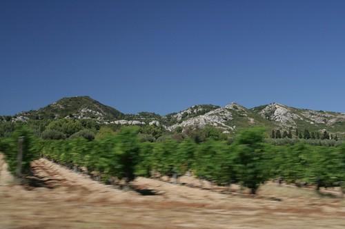 2009-08-05 St Remy de Provence 111