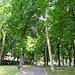 Park, Peschiera