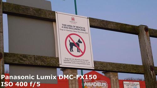Lumix-Nae-Dogs