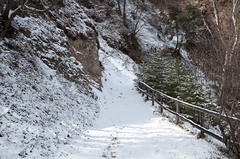 Am Traminer Höhenweg