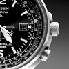 Citizen Eco-Drive wrist watch