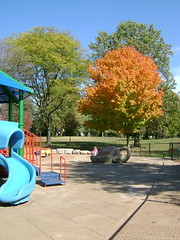 Fall Park Day