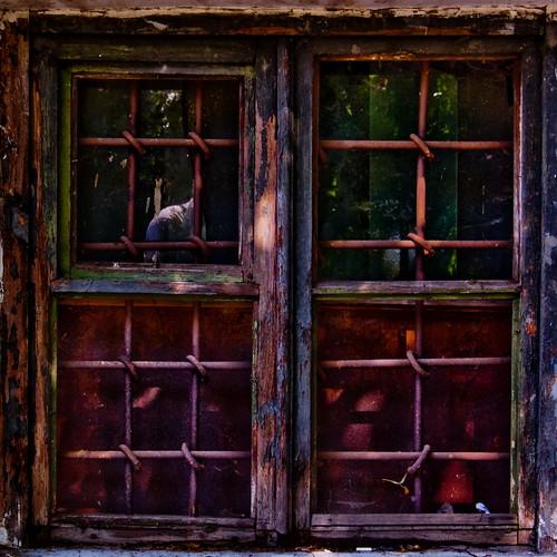 окно-2_новый размер