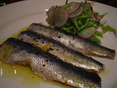 Cured sardines with puntarella and radishes