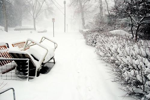 snow junk/street view