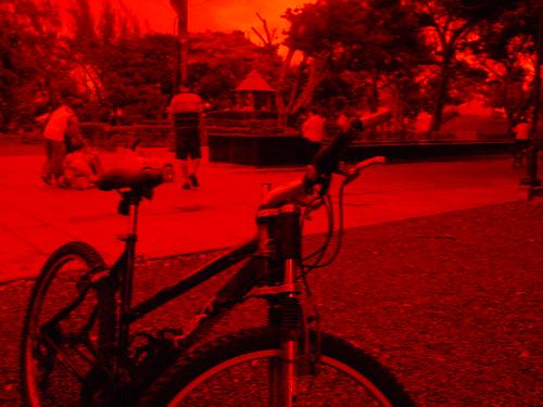 La bicicleta y nosotros