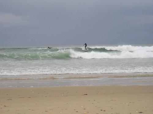 103920673 1607dfee6e Las Olas de hoy,  Viernes 24 de Febrero de 2006.  Marketing Digital Surfing Agencia