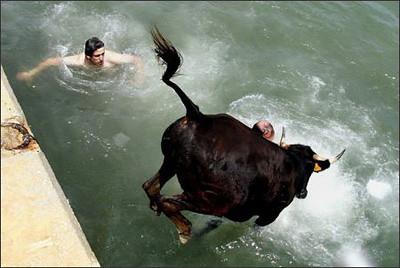 450day1_bull