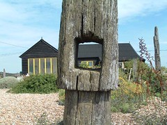 Garden of Prospect Cottage, Dungeness (formerly the home of Derek Jarman)