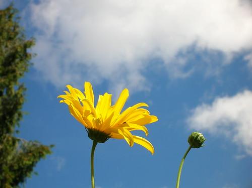 portland september sky