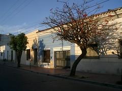 Salta - 16 - Street