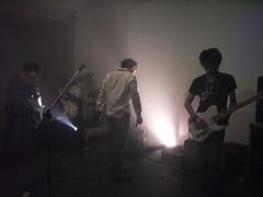 echo live 7