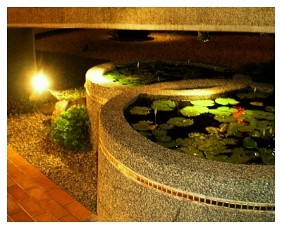 富貴陶園門口水井