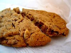 chocolate chip walnut cookie
