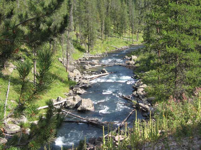 warm river