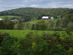 Countryside near Mosquitoville, Vermont