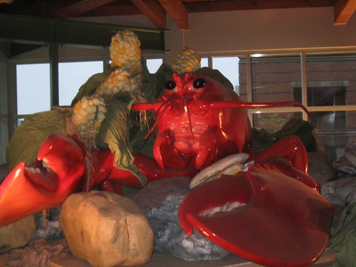 Larger than Life Lobster