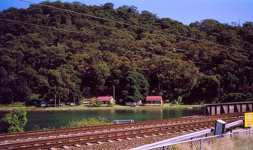 Park's Bay Circa 1900