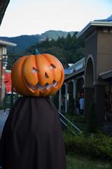 Mr. Halloween!?