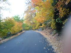 fall at 15mph