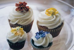 Edible Flowers photo by bittycakes