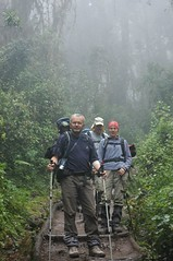 Onze ouders in het regenwoud... Zie hoe 'goed' mama er uit ziet... :-/