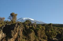 Je zou denken dat die berg wat verder staat, maar het is nog steeds de Kili, en wij zijn nog steeds bezig met afdalen...