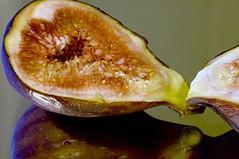 Kissing Fig