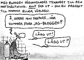 Dagens Berglin