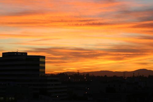sunrise over little tokyo