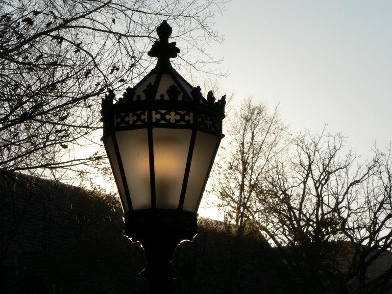 Lamp, sun, trees