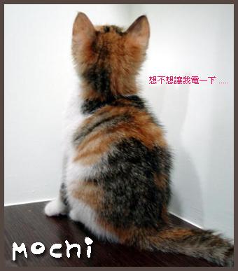 mochi07
