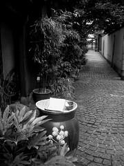 Kagurazaka stone pavement