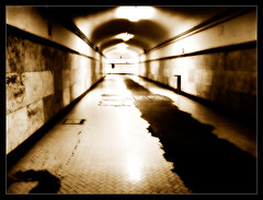 Bologna Underground photo by Iguana Jo