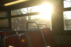 scenes from a bus 1