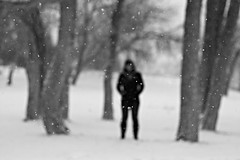 Winter Woods photo by Jessica Neuwerth (Fearless)