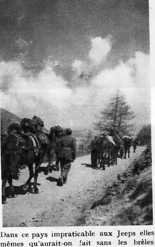 Authion 1945 printemps - les brèles remplacent les jeeps