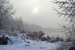 A Foggy Winter Morning At Surrey Lake Park, British Columbia photo by careth@2012