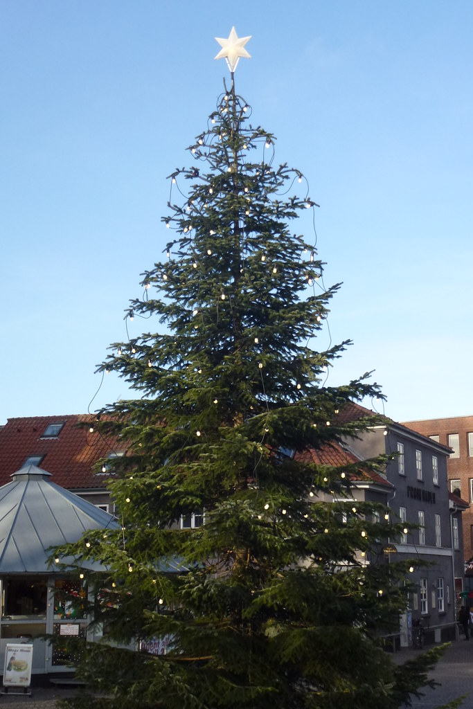 Christmastree in Roskilde