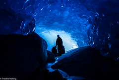 Life underneath the glacier! photo by Fredrik meling
