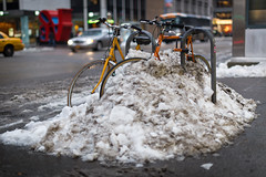 Buried Bikes photo by Adrian Cabrero (Mustagrapho)