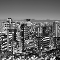 Osaka City at Dusk photo by Rohan Reilly Photography