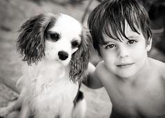 Freunde photo by Corina H.